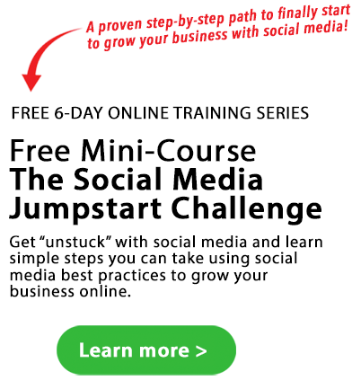 free mini course the social media challenge