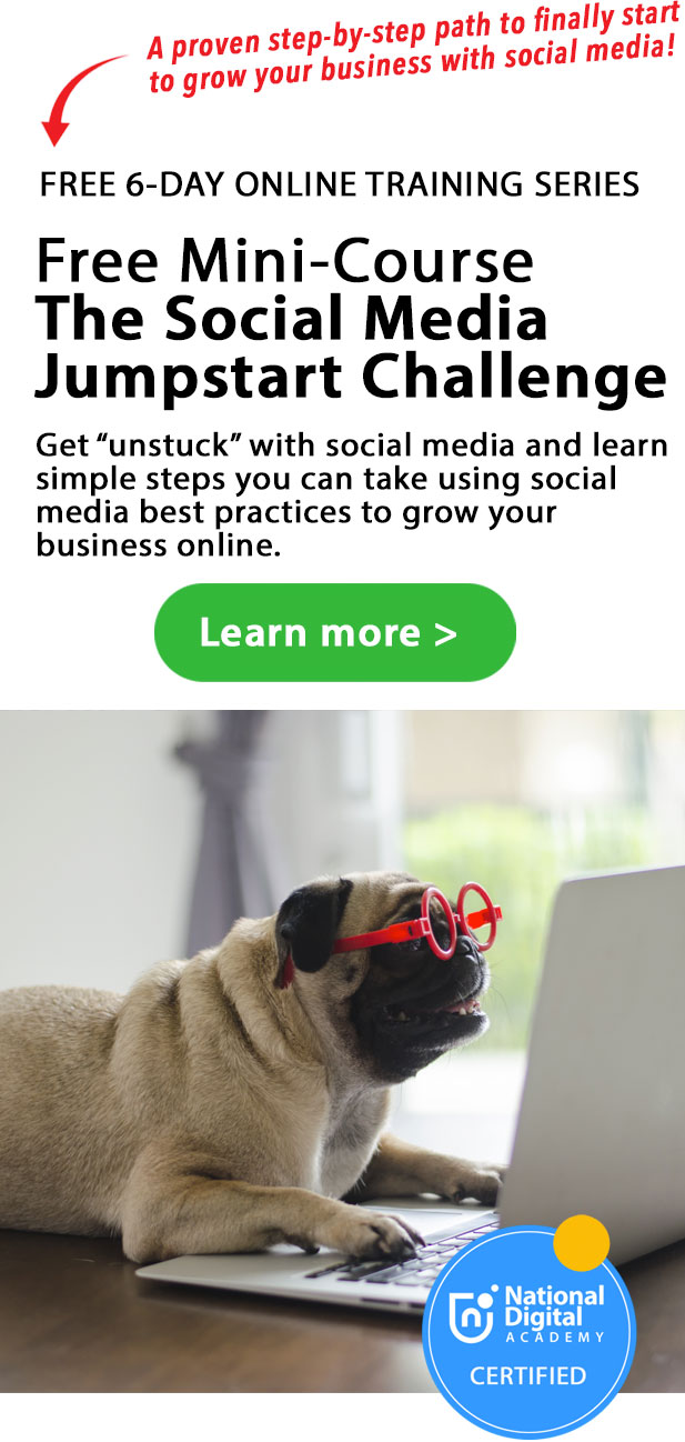 my dog is managing a social media campaign